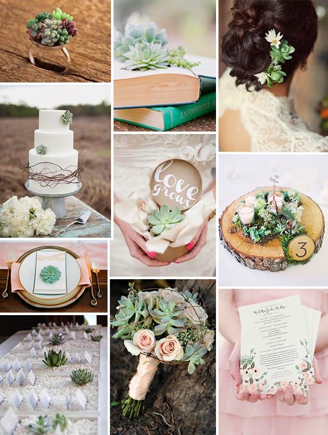 Matrimonio Tema Piante Grasse : Grassa è bello! ispirazioni con piante grasse per matrimoni creativi