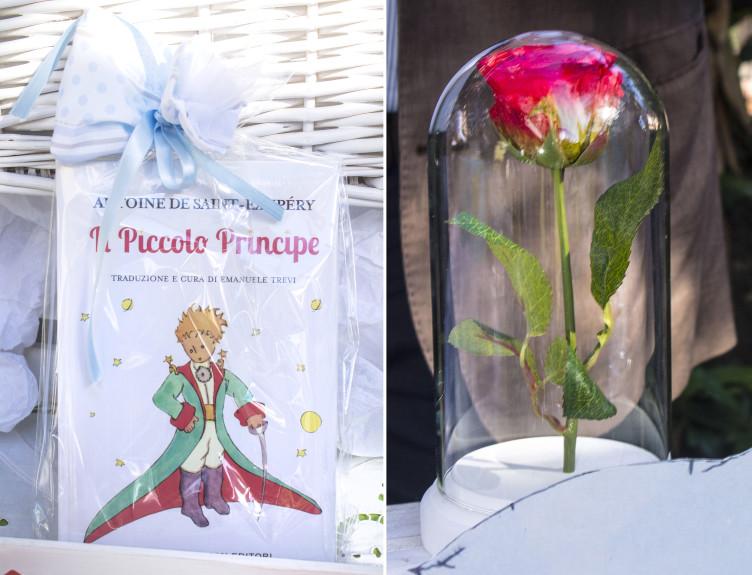 piccolo_principe_comeleciliegie_10