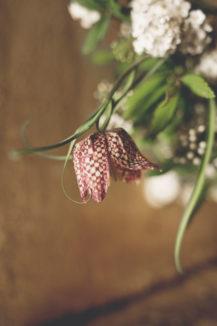elopement-in-sextantio-bocciolo-fiore