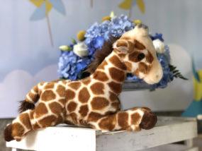 battesimo-a-tema-giraffa-peluche