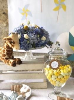battesimo-a-tema-giraffa-confetti