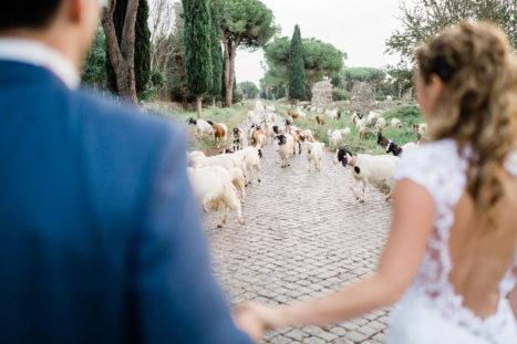 that's-amore-sposi-via-appia-antica-capre