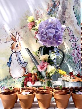 peter-rabbit-vasetti-tiramisu