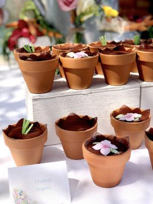 peter-rabbit-vasetti-tiramisu-fiori-carote